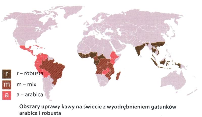 """""""Tajemnice kawy"""" Sara Magdalena Woźny, Wydawnictwo ZYSK IS-KA,Poznań 2011"""